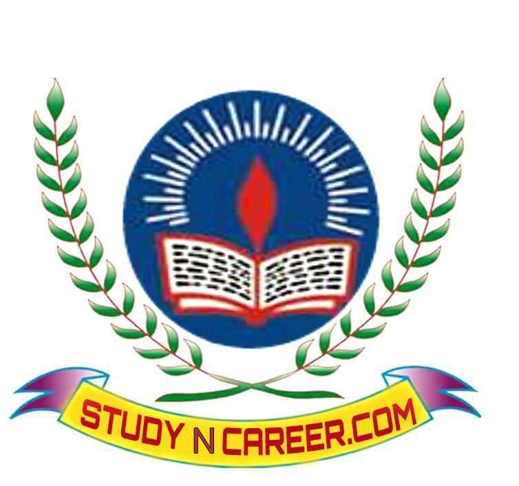 Study N Career