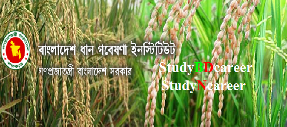 Bangladesh Rice Research Institute BRRI Job Circular 2020