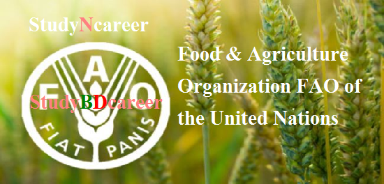 Food & Agriculture Organization (FAO) of the United Nations Job Circular 2020