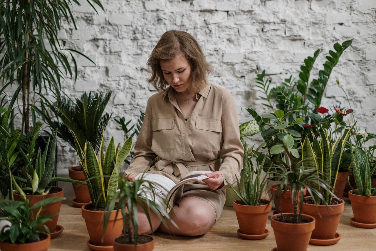 Best New Botanist Job Opportunities - Thursday 11/26
